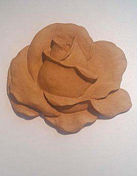 d.art-xyloglipta-0324-450x600