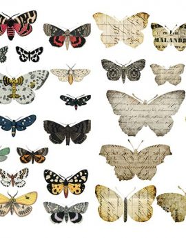 Bohemian Butterfly Collage Sheet.psd